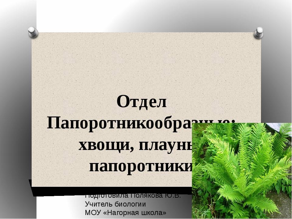 Отдел Папоротникообразные: хвощи, плауны, папоротники Подготовила Полякова Ю....