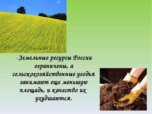 Под сельскохозяйственными угодьями в россии занято