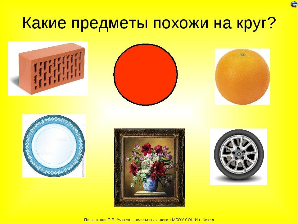Картинка предметов похожих на круг