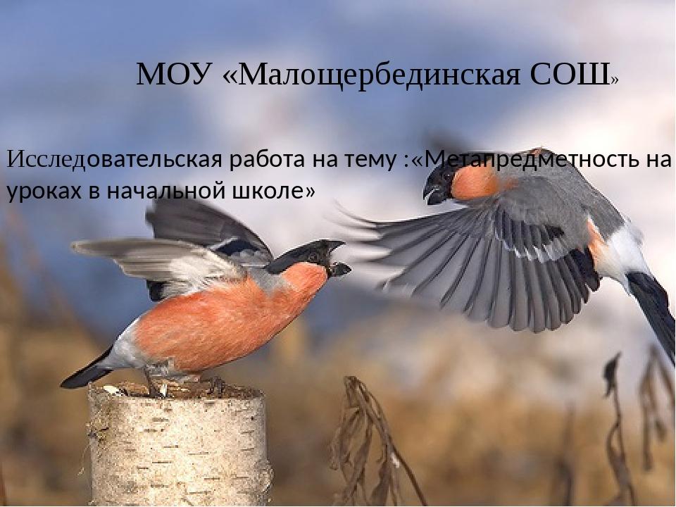 МОУ «Малощербединская СОШ» Исследовательская работа на тему :«Метапредметнос...