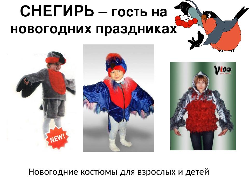 СНЕГИРЬ – гость на новогодних праздниках Новогодние костюмы для взрослых и де...