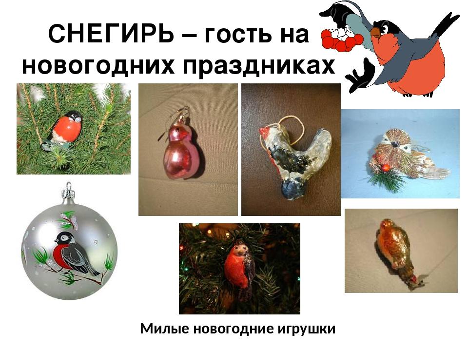 СНЕГИРЬ – гость на новогодних праздниках Милые новогодние игрушки