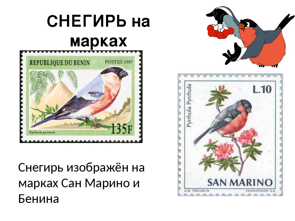 СНЕГИРЬ на марках Снегирь изображён на марках Сан Марино и Бенина