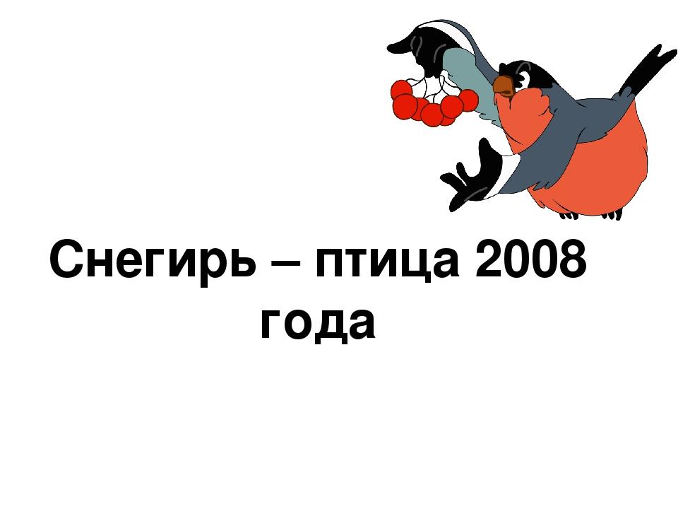 Снегирь – птица 2008 года