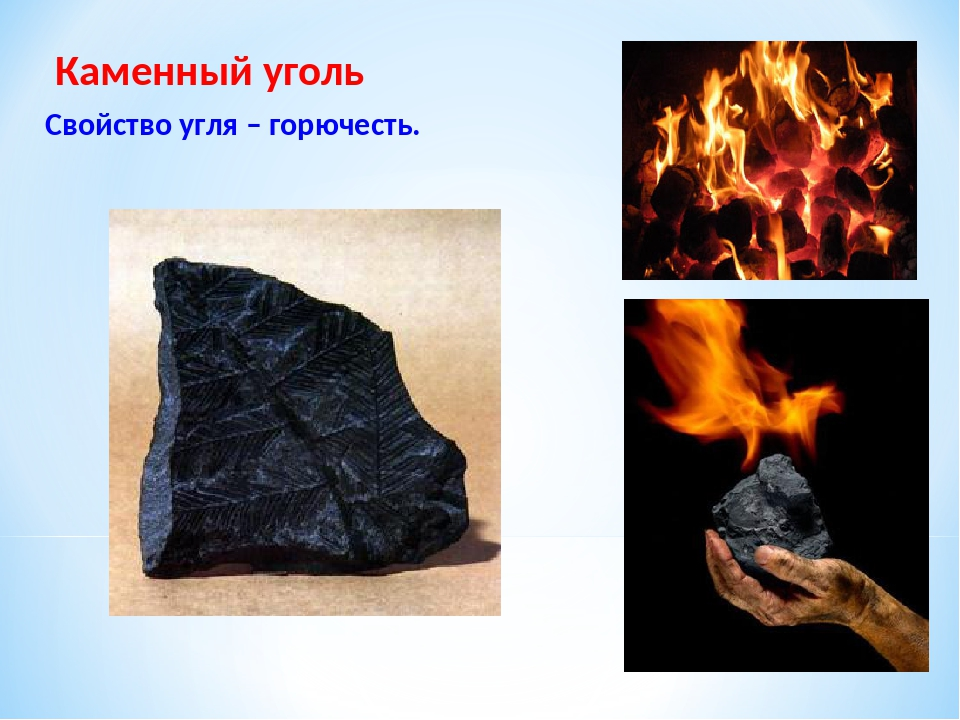 Каменный уголь Свойство угля – горючесть.