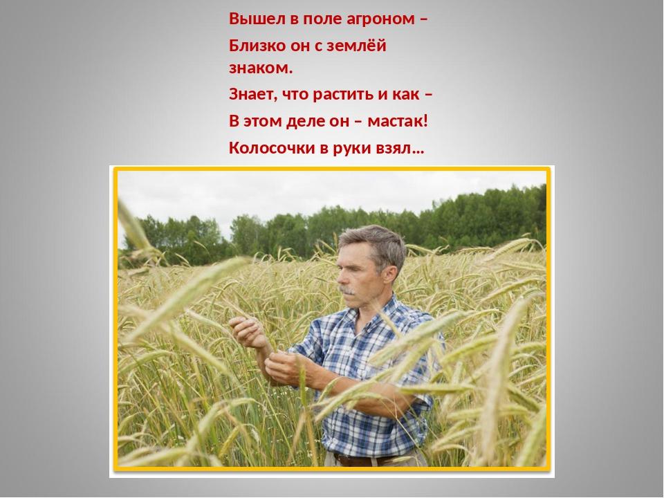 Стихи поздравления агроному