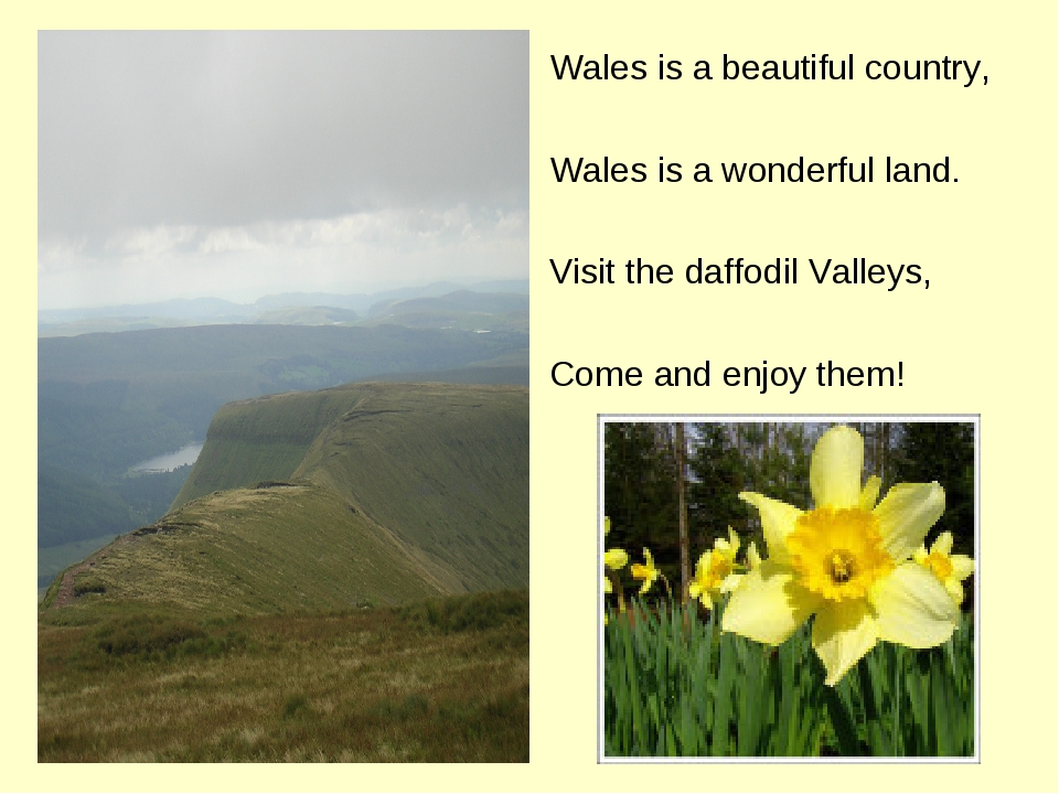 Wales is a beautiful country, Wales is a wonderful land. Visit the daffodil V...