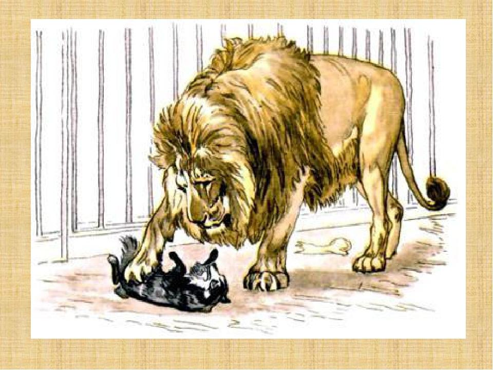 толстой лев и собачка картинки