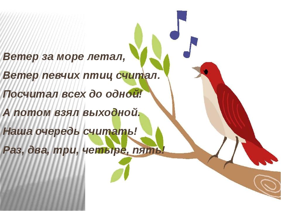 Ветер за море летал, Ветер певчих птиц считал. Посчитал всех до одной! А...