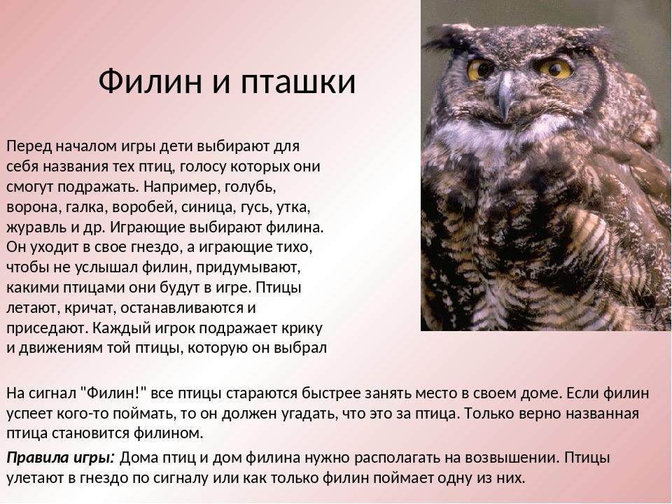 Правила игры: Дома птиц и дом филина нужно располагать на возвышении. Птицы у...