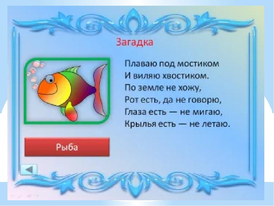 загадки о рыбах в картинках очень