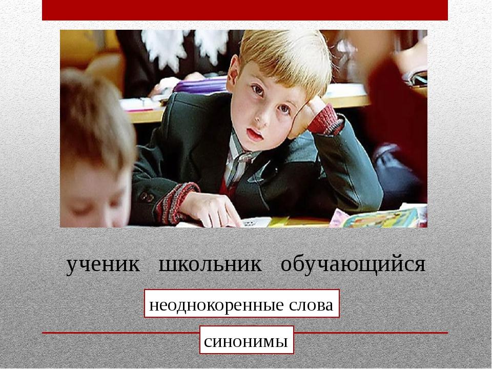 ученик школьник обучающийся неоднокоренные слова синонимы