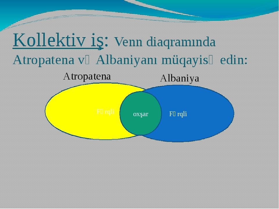 Kollektiv iş: Venn diaqramında Atropatena və Albaniyanı müqayisə edin: Fərqli...