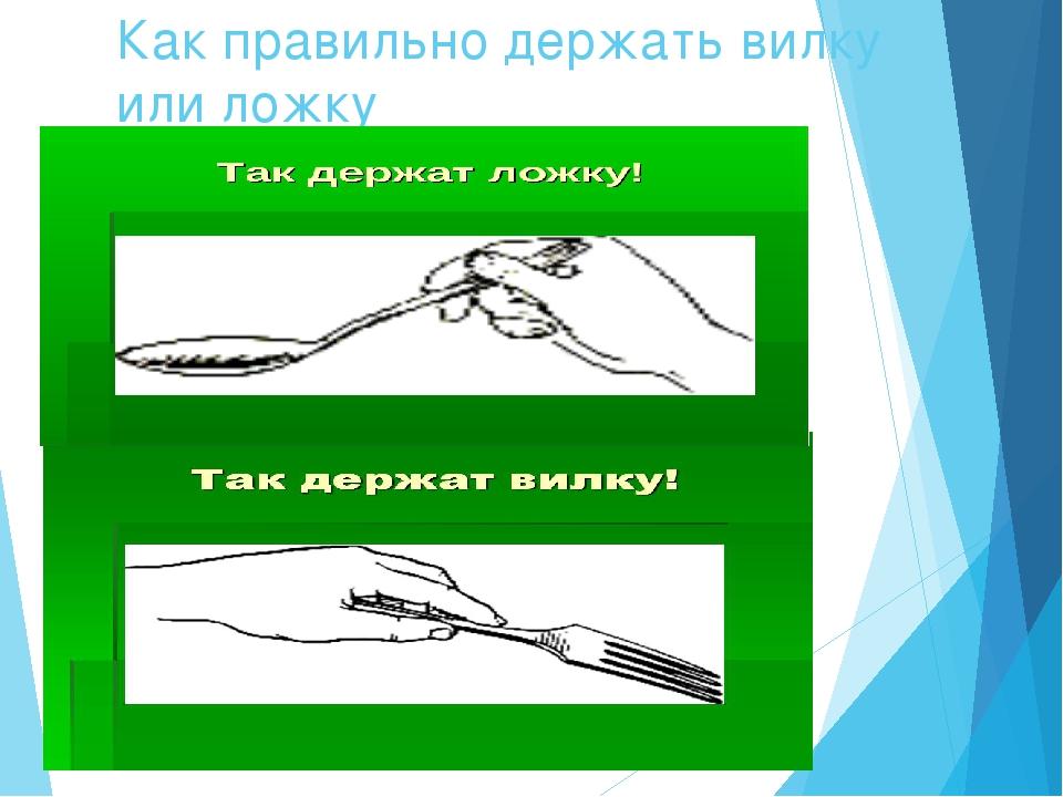 Как правильно держать вилку или ложку Как держать вилку?