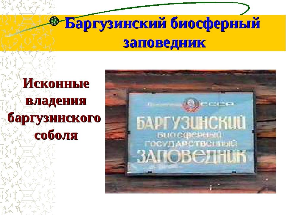 Баргузинский биосферный заповедник Исконные владения баргузинского соболя