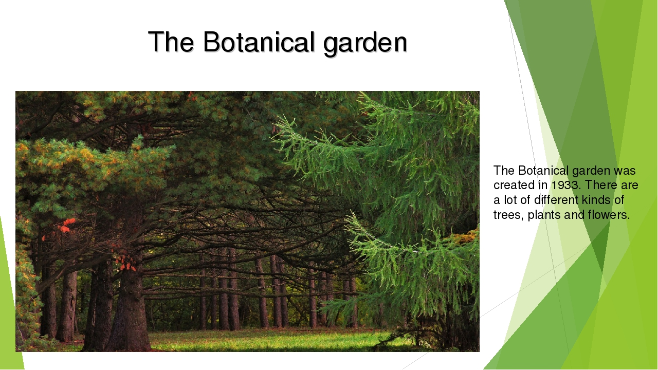 The Botanical garden The Botanical garden was created in 1933. There are a lo...