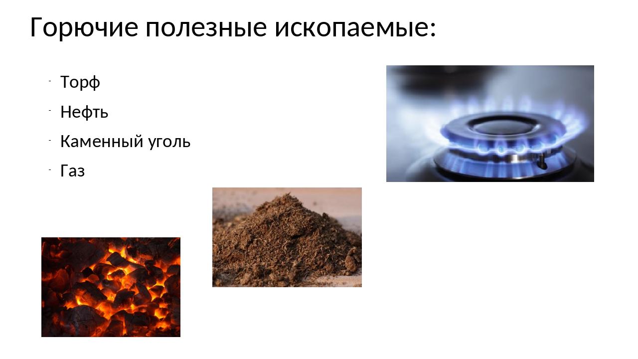 Горючие полезные ископаемые: Торф Нефть Каменный уголь Газ