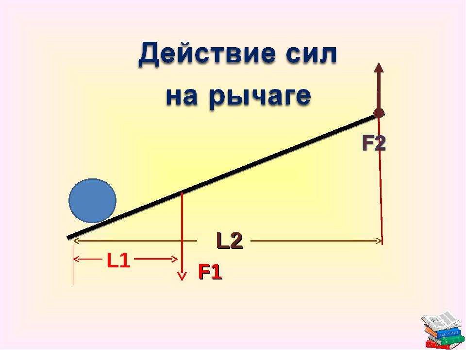 F1 L2 L1