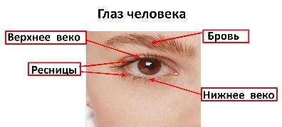 hello_html_5dfe3d52.jpg