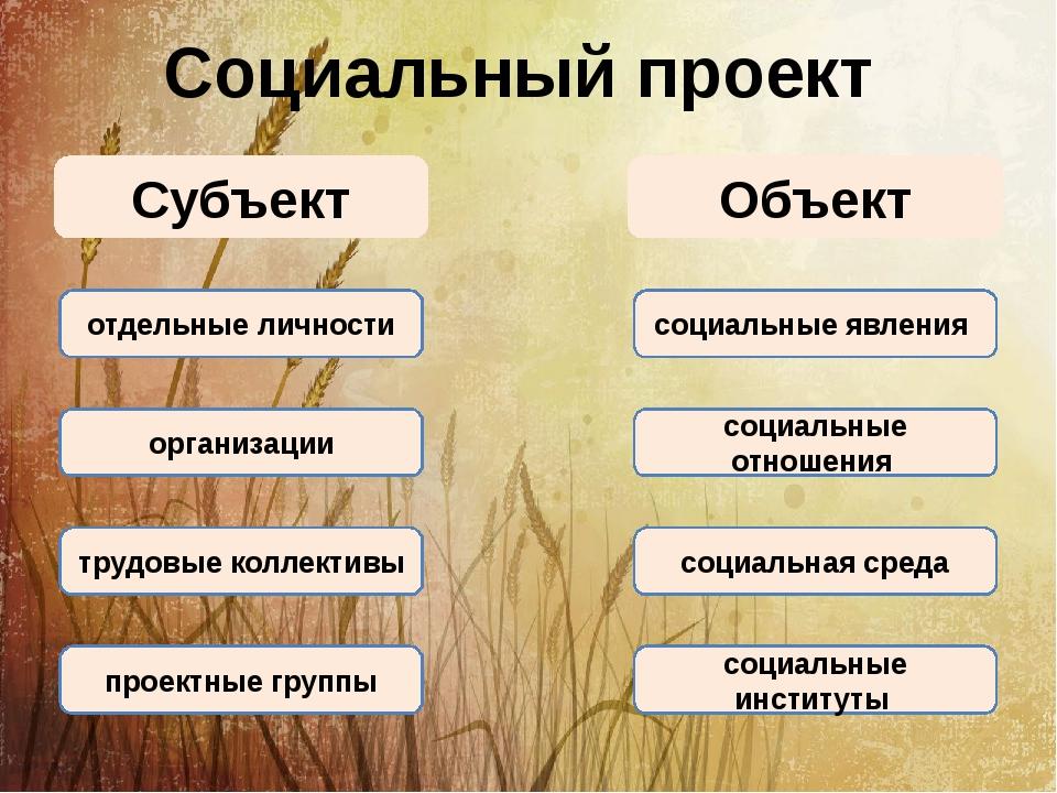 Социальный проект Субъект Объект отдельные личности организации социальные яв...