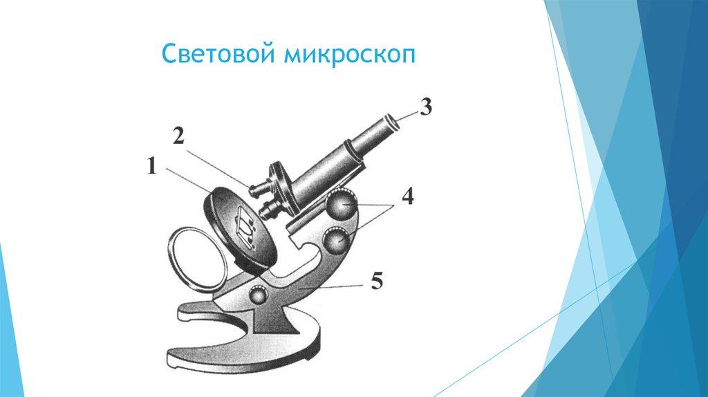 hello_html_m17d3c208.jpg