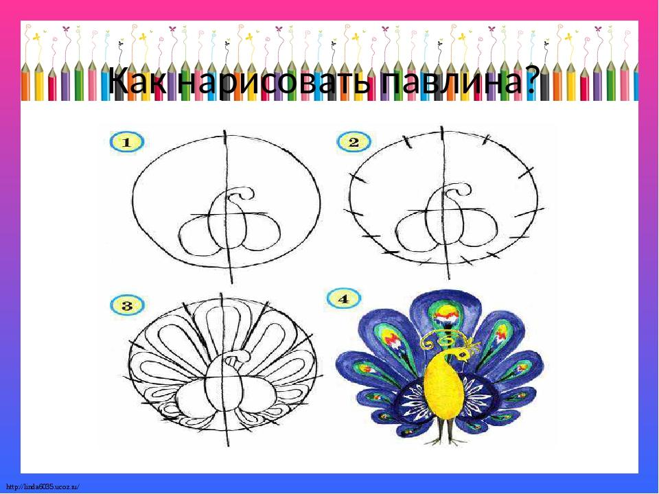 Как нарисовать павлина? http://linda6035.ucoz.ru/