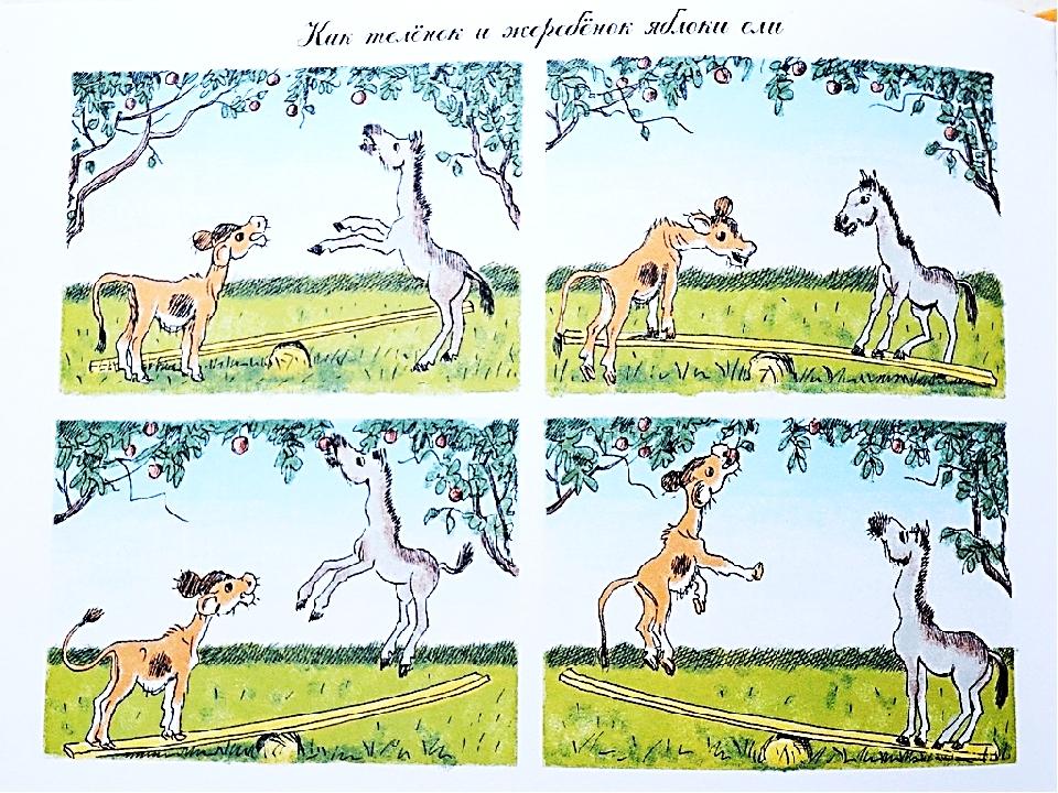 Рассказ по картинкам с животными
