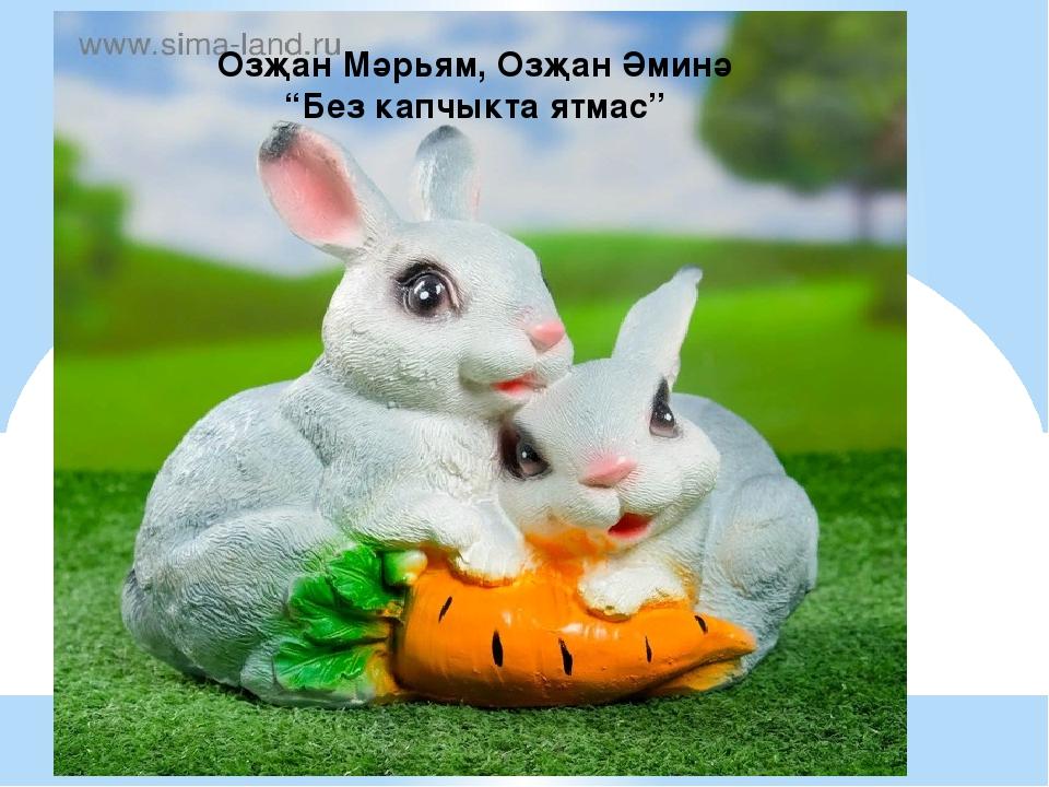 "Озҗан Мәрьям, Озҗан Әминә ""Без капчыкта ятмас"""