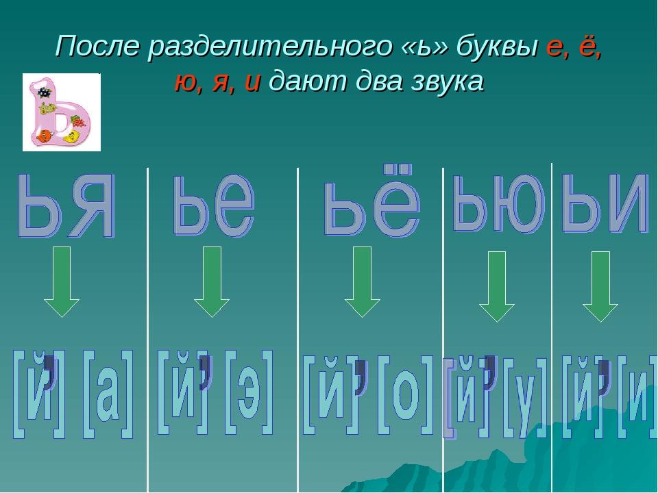 После разделительного «ь» буквы е, ё, ю, я, и дают два звука
