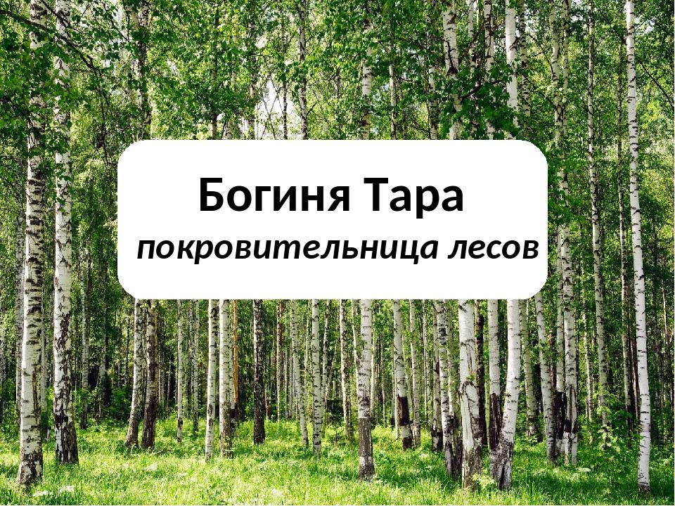 Богиня Тара покровительница лесов