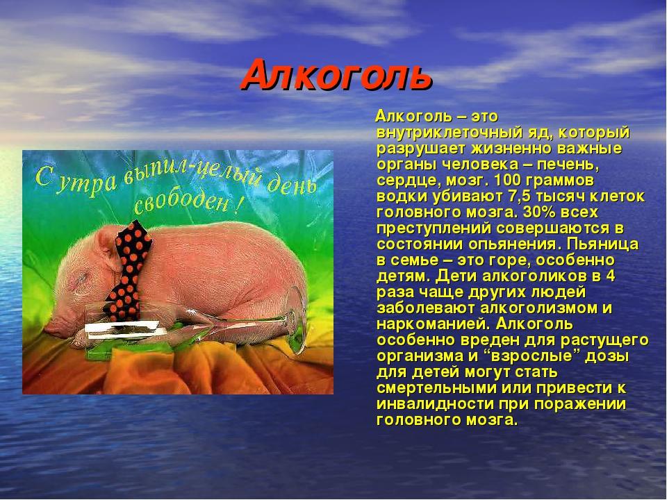 Алкоголь Алкоголь – это внутриклеточный яд, который разрушает жизненно важные...