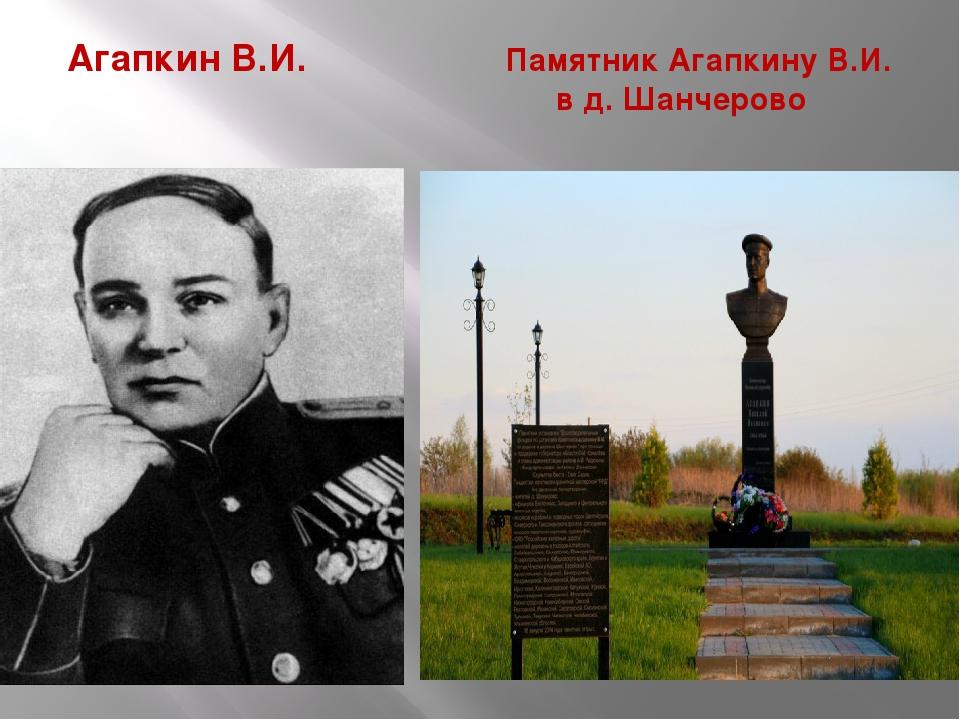 Агапкин В.И. Памятник Агапкину В.И. в д. Шанчерово