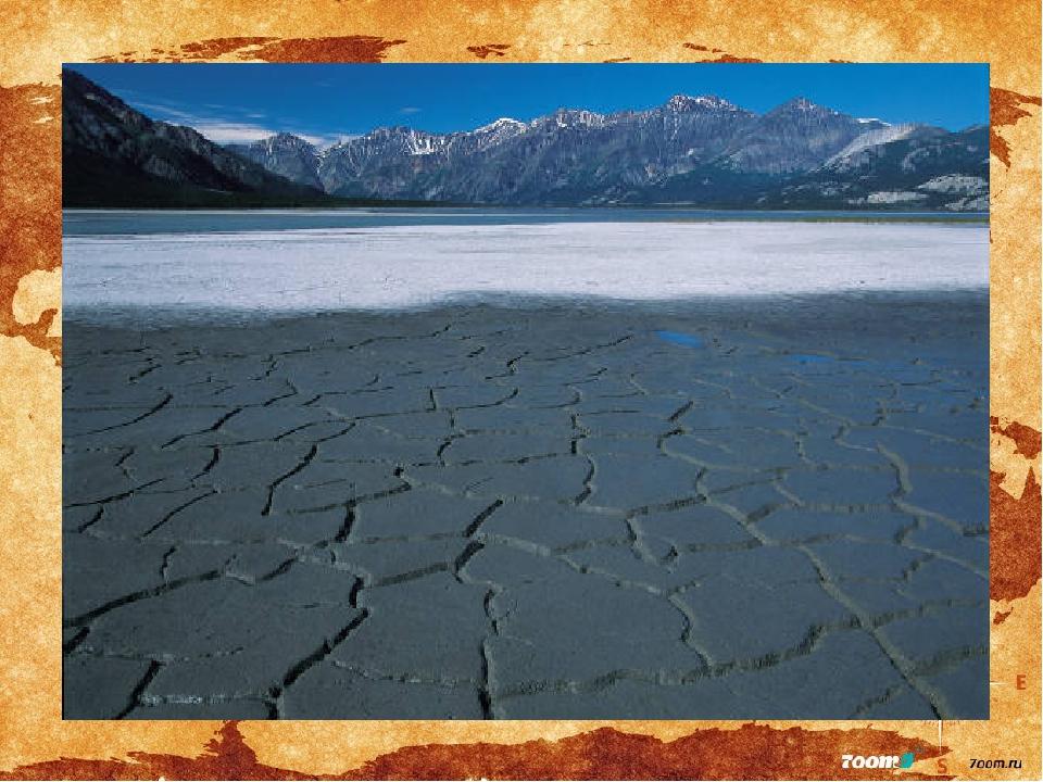 картинка арктические почвы мне нравится, обыденно
