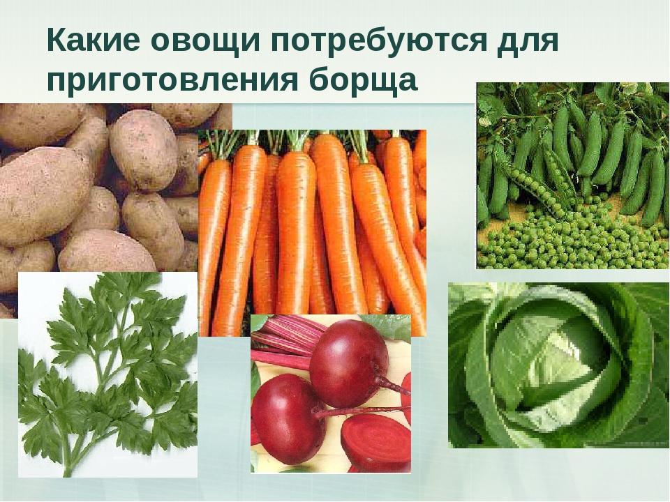 Какие овощи потребуются для приготовления борща
