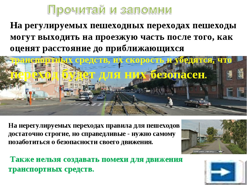 На регулируемых пешеходных переходах пешеходы могут выходить на проезжую час...