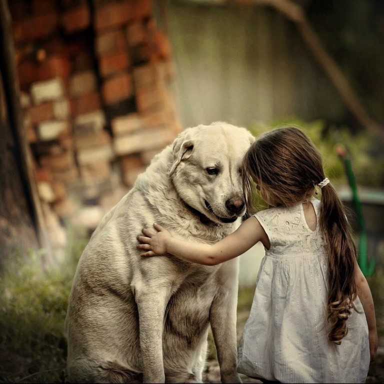 День, трогательные картинки с животными и с надписями