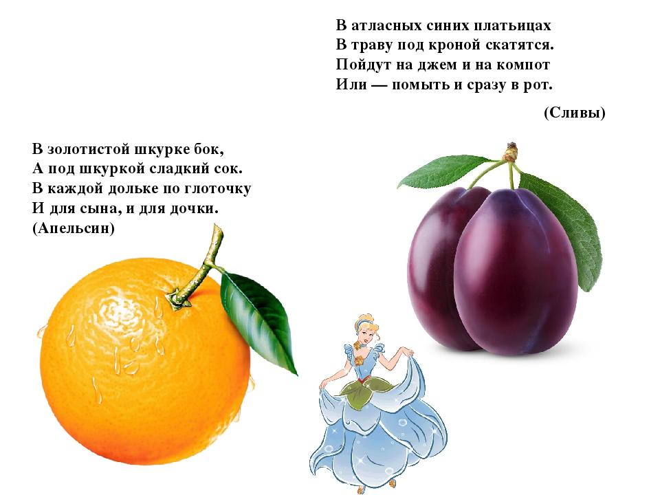 которую загадки о фруктах и ягодах с картинками представлены картинки счета