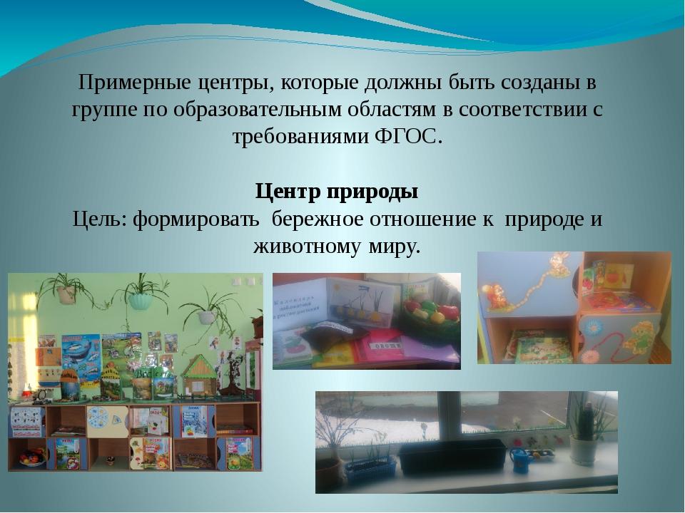 Примерные центры, которые должны быть созданы в группе по образовательным обл...