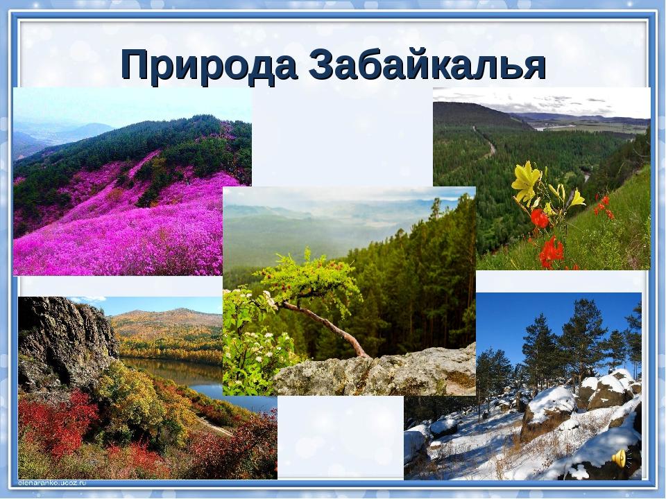 Природа Забайкалья