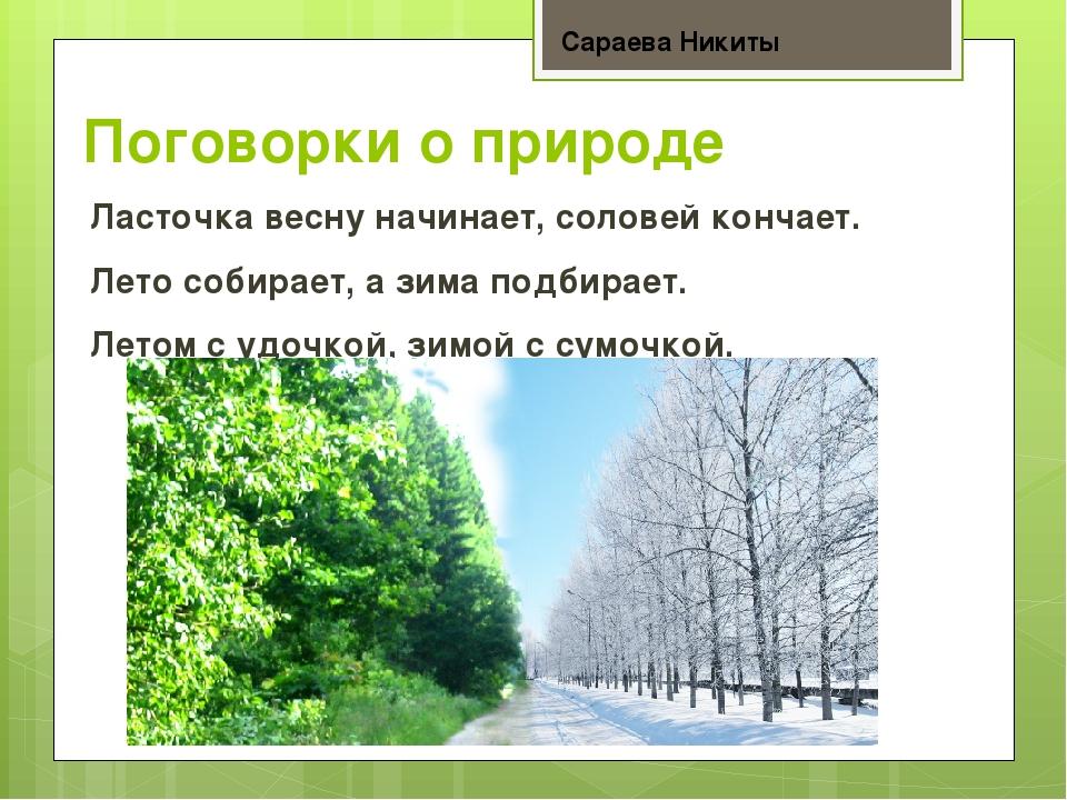 Пословицы о природе с картинками