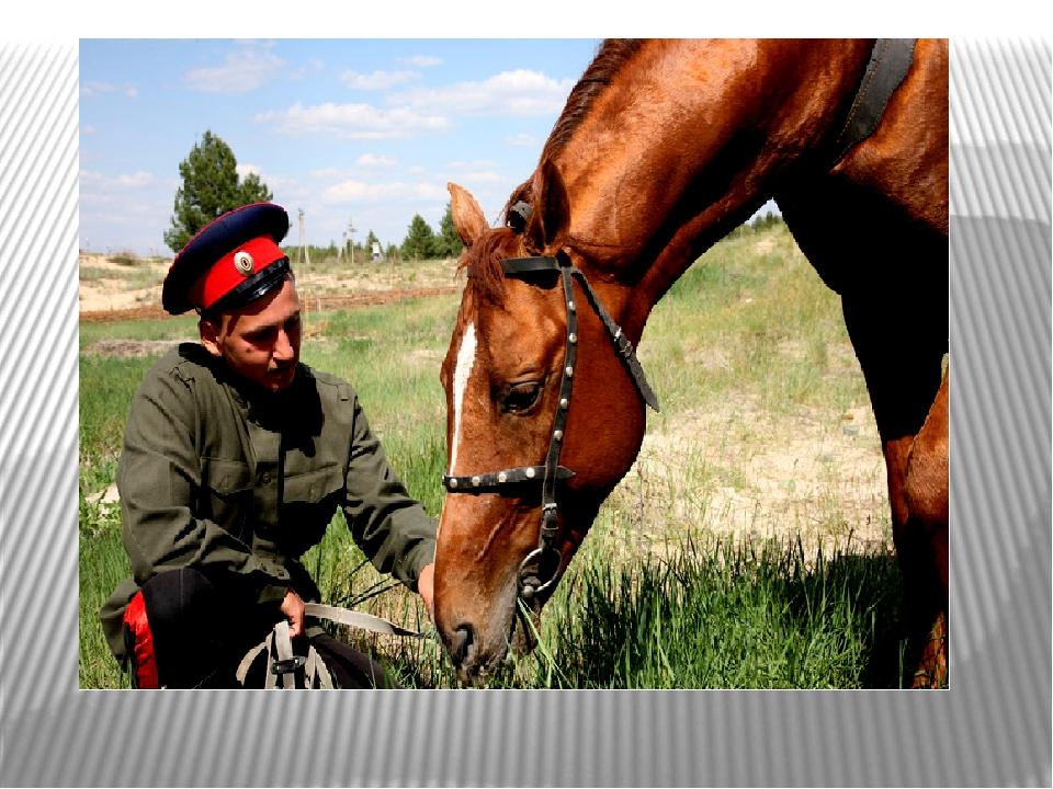 4. Казак с конём и ночью, и днём.