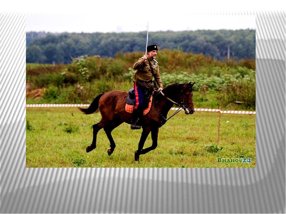 5. Не хвались, на коня садясь, а хвались, когда слезаешь.