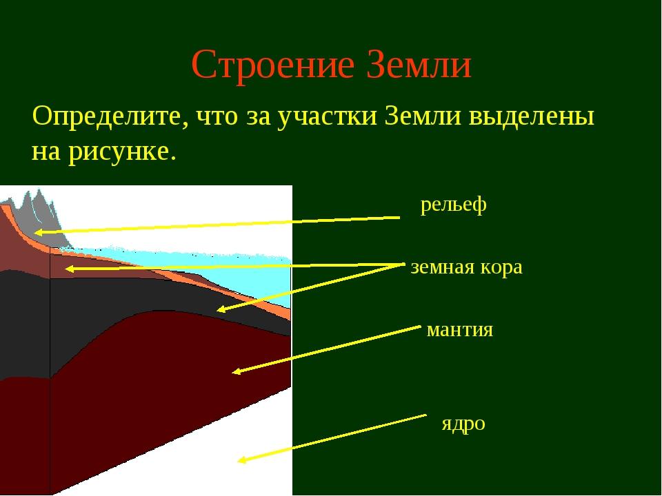 Строение Земли Определите, что за участки Земли выделены на рисунке. мантия...