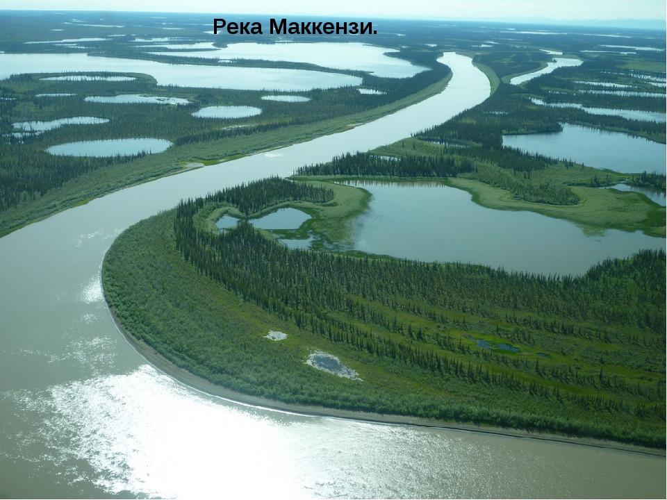Река Маккензи.