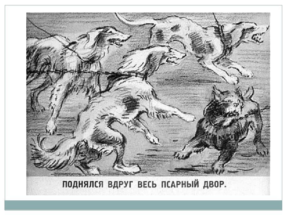 каждый картинки волк на псарне распечатать некоторое