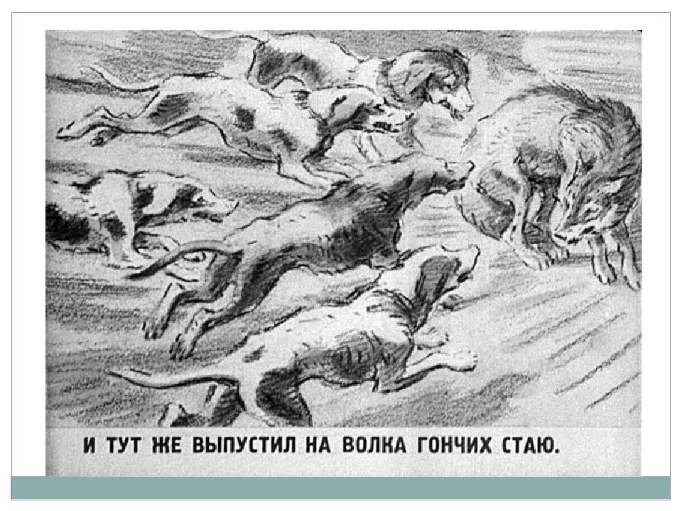 басни крылова волк на псарне с картинками