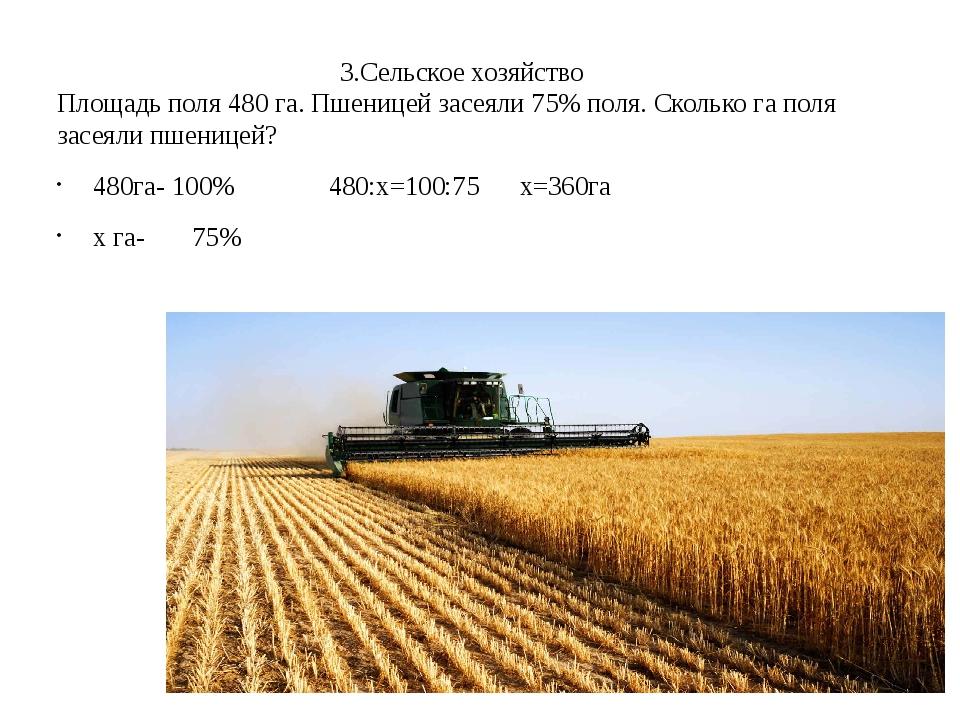 3.Сельское хозяйство Площадь поля 480 га. Пшеницей засеяли 75% поля. Сколько...