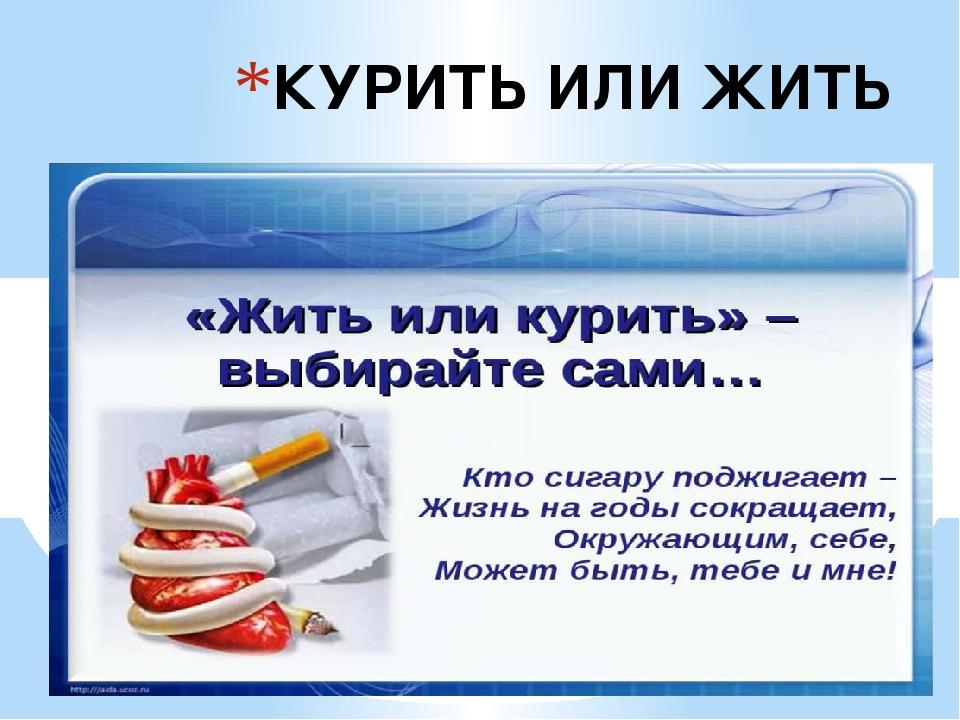 денег курить или не курить картинка если веник ему