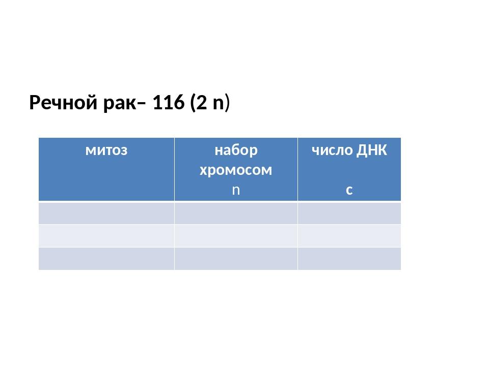 Речной рак– 116 (2 n) митоз набор хромосом n число ДНК с