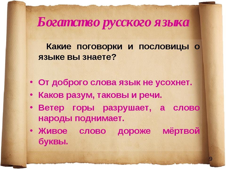 Богатство русского языка Какие поговорки и пословицы о языке вы знаете? От до...